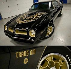 Vintage Motorcycles Muscle 1976 Pontiac Trans Am Ford Mustang, Mustang Cars, Pontiac Cars, Chevrolet Camaro, Corvette, Best Muscle Cars, American Muscle Cars, Smokey And The Bandit, Pontiac Firebird Trans Am