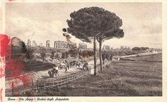 *Vintage Rome Via Appia Postcard