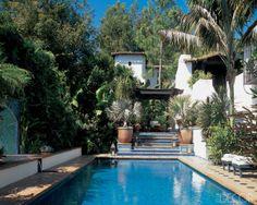 pool  landscape  lush yard