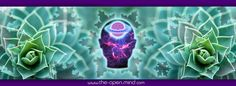 5 Ways To Open Your Third Eye, Here's How To Open Yours! | http://www.the-open-mind.com/5-ways-to-open-your-third-eye-heres-how-to-open-yours-5/