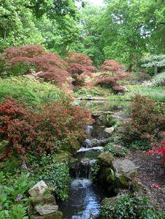 Exbury Gardens - New Forest, Hampshire, England