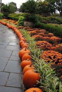 36 Easy but Creative Fall Garden Design Ideas in the Small Yard