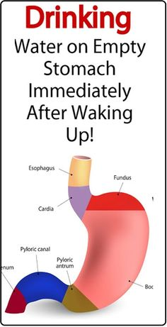 Here Is Why You Need to Drink Water on an Empty Stomach After Waking Up!