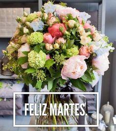 Feliz Martes / Feliz Día / Martes / Tuesday / Happy Tuesday  / Happy Day / Que pases un lindo día / Buenos Días / Good Morning