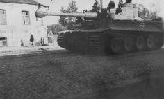 Tiger I 8.SS Panzer Regiment 2 Das Reich