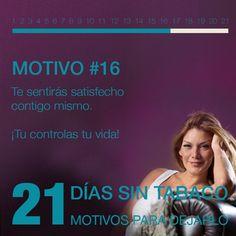 Motivo 16
