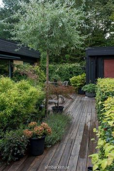 52 Fresh Front Yard and Backyard Landscaping Ideas for 2019 Landscaping with boulders Back Gardens, Small Gardens, Outdoor Gardens, Indoor Garden, Landscaping With Boulders, Backyard Landscaping, Landscaping Ideas, Unique Garden, Sloped Garden