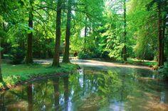 Parco di Villa Verdi