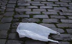 Os sacos plásticos multiplicam-se a olhos vistos e quando damos por ela temos tantos para tão pouco uso. Tendo em conta a sua abundância e o facto que um simples saco plástico pode demorar até mil anos a decompor-se, é preciso saber reutilizar estes objetos diários, a bem do meio ambiente.