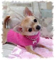 Soooo pretty in pink!!                                                                                                                                                                                 More