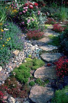 "Front garden walk idea -- like the ""forest"" or cottage garden stepping stones boarded by dense flowering plants Landscaping With Rocks, Backyard Landscaping, Landscaping Design, Jardin Decor, Garden Cottage, Garden Bed, Herb Garden, Vegetable Garden, Garden Landscape Design"