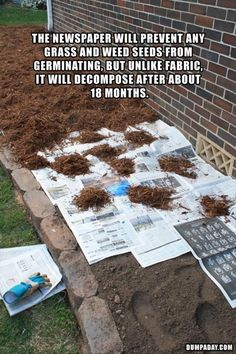 Line flower bed with newspaper.