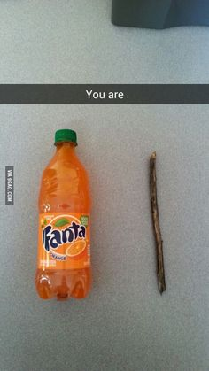 You are. so punny.