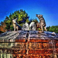 Fuente de los Coyotes, en la Alameda del Sur.  Coyoacan D.F.