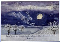 Luna Moon Hare has arrived at Beltane