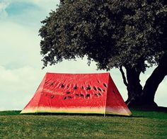Designed by Luke Bonner, and manufactured by FieldCandy, the mouthwatering camping companion comfortably sleeps two, and comes with two layers of outdoor cover. Its inner tent, a 100% cotton, fire retardant white sheath, is easily erected with snap-together poles, and secured to the earth with extra strong pegs, made of hardened, won't-bend-on-you aluminum. The watermelon overlay is completely waterproof--tested to a minimum of 3,000 mm Hydrostatic Head--and promises to keep its human…