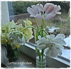 Lotterstübchen: Kar-Friday-Flower Friday, Flowers, Plants, Plant, Royal Icing Flowers, Flower, Florals, Floral, Planets