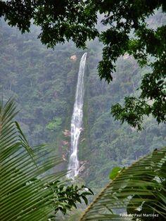"""Fluyendo desde las alturas de Pico Bonito se encuentra la cascada """"El Bejuco"""", caída de agua de cerca de 80 metros a altura y que es uno de los 46 ríos que bajan de la cima de la montaña mas alta de toda Centroamérica de frente al Mar Caribe, Honduras es bella"""