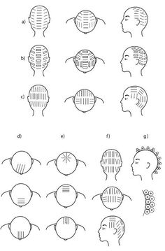 How To Choose Perfect Haircut For Your in addition Cute Easy Drawings in addition How To Create 1940s Hairstyles as well Windiness as well Milady Chapter 16 Hair Cutting Flash Cards. on haircuts front and back