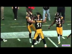 Polamalu - Defensive Player of the Year