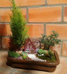 El Jardin de Rose Anne. Mini garden de pino, suculentas y tunitas!