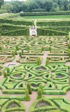 Lovely Heart Maze Garden - reminds me of Alice in Wonderland