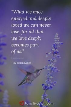 Find heartfelt funeral quotes that can be used in a eulogy or in a sympathy card today. Death Quotes, Loss Quotes, Wisdom Quotes, Sympathy Card Messages, Sympathy Quotes, Loss Of A Loved One Quotes, Helen Keller Quotes, Funeral Quotes, Goodbye Quotes