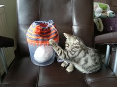 Crochet Korb https://www.facebook.com/photo.php?fbid=431479480294265&set=a.405009609607919.1073741831.405004926275054&type=3&theater