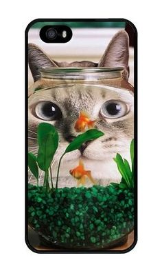 iPhone 5/5S Case DAYIMM Funny Cat Face Black PC Hard Case for Apple iPhone 5/5S DAYIMM? http://www.amazon.com/dp/B013DGHJTW/ref=cm_sw_r_pi_dp_rKlfwb1V9XK2M