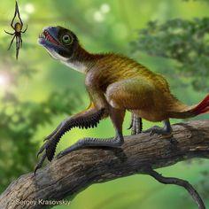 Epidexipteryx, a dino-bird closely related to Archaeopteryx (Sergey Krasovskiy)