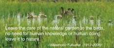 Image result for natural farming