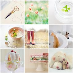 another pretty monday... by pilli pilli, via Flickr