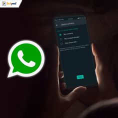 Do you want to hide or show your WhatsApp status to a limited number of contacts. Read our blog to learn about simple methods that can help you achieve it. #WhatsAppStatus #HideYourWhatsAppStatus