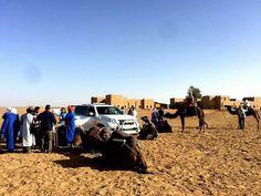 Desert your. Camel vs 4x4 :-)