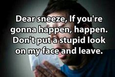 Dear sneeze..