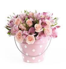 rosas e astromélias