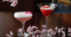 Cherry blossom food cocktails in D.C. and Tokyo   Share This Story!  Let friends in your social network know what you are reading about  Cherry blossom treats from Tokyo to D.C.  Restaurants and hotels offer themed food and drinks as cherry blossoms bloom in Washington D.C. and Tokyo this month.  Post to Facebook  Sent!  A link has been sent to your friends email address.  Posted!  A link has been posted to your Facebook feed.   Autoplay  Show Thumbnails  Show Captions  Last SlideNext Slide…