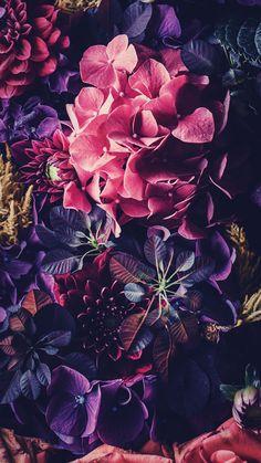 34 Ideas For Wallpaper Iphone Purple Flowers Pink Wallpaper Iphone Mandalas, Floral Wallpaper Iphone, Iphone Wallpapers, Nature Wallpaper, Wallpaper S, Cute Wallpapers, Floral Wallpapers, Beautiful Wallpaper, Wallpaper Makeup
