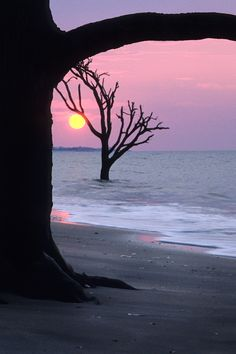 Sunrise, Boneyard Beach, Botany Bay Plantation, Edisto Island, SC © Doug Hickok All Rights Reserved