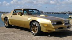 colorful pictures of muscle cars | 1978 Pontiac Gold Special Edition Trans Am