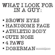 W4D. ❤️ #dobermanisbae #doberman #dobermanpride #dobermanpinscher