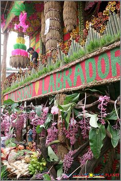 Pahiyas is one of the most awesome fiestas in the country. It falls on the feast day of San Isidro Labrador, the patron saint of farmers to show gratitude for a good and abundant harvest. Festival Guide, Local Festivals, Labrador, Madrid, Balloons, San, Awesome, Tips, Fiestas
