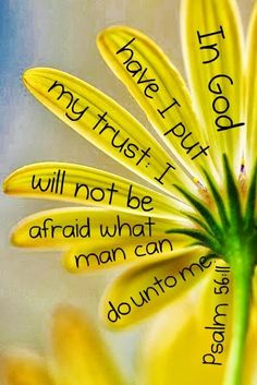 ♥- 'Psalms 56:9;11;13 (KJV)  This I know; for God is for me. [11] In God have I put my trust: I will not be afraid what man can do unto me. [13] For thou hast delivered my soul from death: wilt not thou deliver my feet from falling, that I may walk before God in the Light of the Living-♥