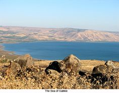 Sea of Galilee, Israel Hard to believe it is a lake. Peter's fish prepared at a local food establishment there. Palestine, Places To Travel, Places To See, Israel Today, Visit Israel, Sea Of Galilee, Image Sites, Israel Travel, Holy Land