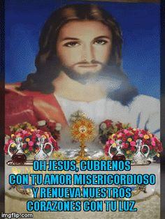 Oh Jesus, cubrenos con tu amor misericordioso y renueva nuestros corazones con tu luz.