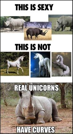 Unicorns exist. They just happen to be larger, grey, and called Rhinos. SO if we could stop poaching them it would be great.