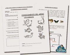 La Eduteca: RECURSOS PRIMARIA   Unidad didáctica de los animales para 1º de Primaria