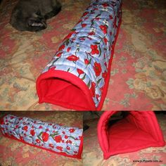 Guinea pig tunnel.