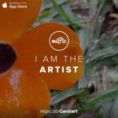 miPic is a social marketplace for artists & photographers to print, share & sell their pictures as beautiful art, fashion and lifestyle products Orange Flowers, Cool Art, App, Gallery, Awesome, Artist, Check, Pictures, Products