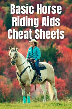 Read this blog post and get your riding aids cheat sheet. This is basic riding aids so, great for beginner horse riders. Also good for going back to the basics for more experienced riders.You can print the page or sign up and get a pdf of the cheat sheets. #beginnerequestrian #beginnerhorserider #learntohorseride #horsebackriding #horseriding #learnhorsebackriding #howtohorsebackriding #equestrianprintable #horseprintable Horse Behavior, Horse Training Tips, Horse Print, Cheat Sheets, Horse Riding, Horseback Riding, Cheating, Equestrian